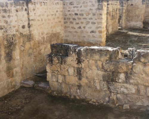 visita-guiada-medina-azahara-yacimiento